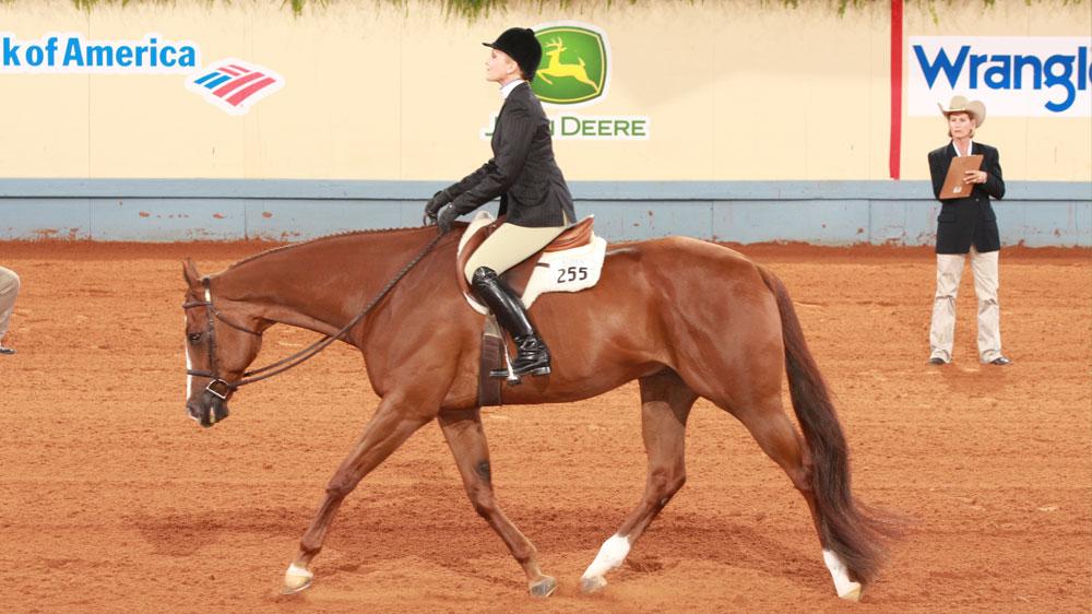Weekly FoalTracker™